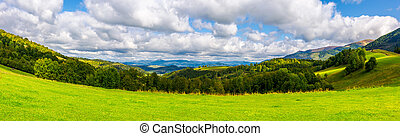 panorama of green alpine meadow in autumn. forested hills...