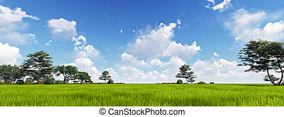 Panorama of Green Grass with cloud and the blue sky. 3d ...