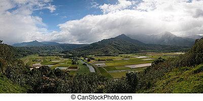 Panorama of Hanalei Valley on Kauai