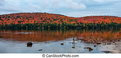 Panorama of Lake and Autumn Tree Colors