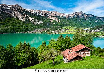 Panorama of lake Brienz