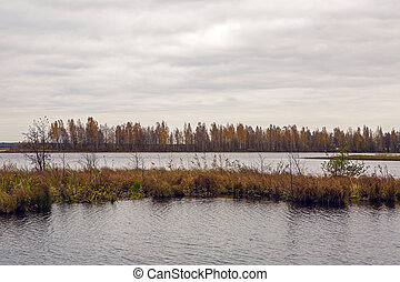 panorama of lake with autumn trees
