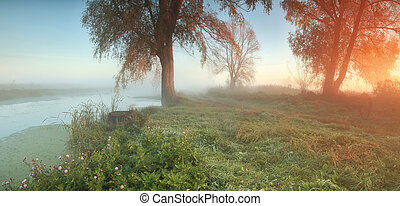 Panorama of misty autumn forest at sunrise