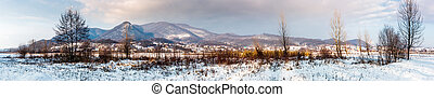 panorama of mountainous countryside in winter. trees on...