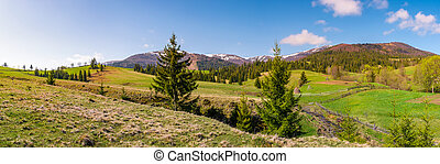 panorama of mountainous landscape in springtime. lovely...