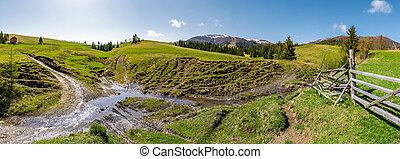 panorama of mountainous rural countryside. spruce forest on...