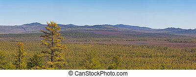 Panorama of mountainous terrain in South Yakutia, Russia, in the beginning of autumn