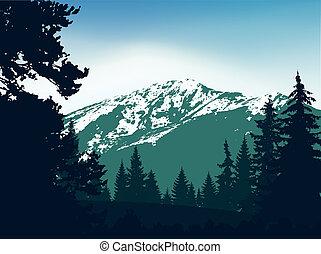 Panorama of mountains.