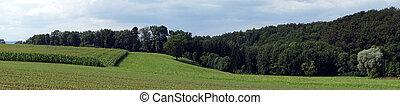 Panorama of rural area