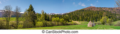 panorama of rural field in mountains. haystack on grassy...