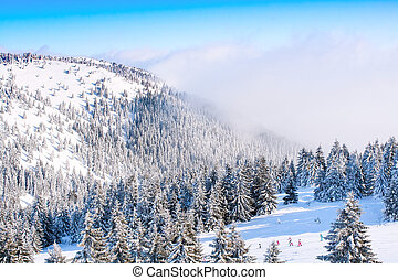 Panorama of ski resort Kopaonik, Serbia, people skiing, houses covered with snow