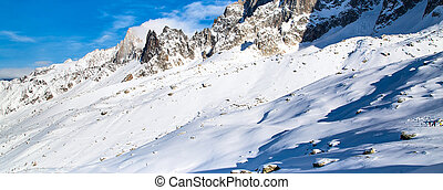 Panorama of snow mountain landscape