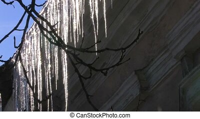 Panorama of sparkling icicles