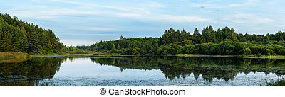 panorama of summer lake on the background forest and blue sky