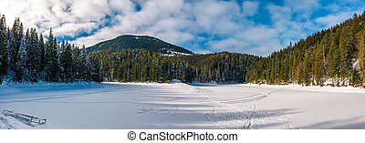panorama of Synevyr lake in winter - panorama of ice covered...
