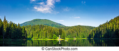 panorama of Synevyr lake on summer morning