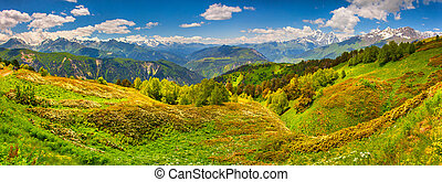 Panorama of the alpine meadows. Upper Svaneti, Georgia, Europe.