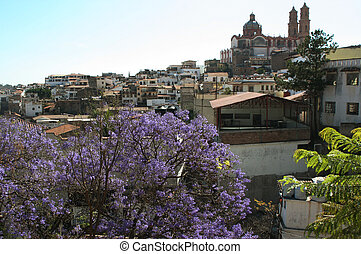 Panorama of the city Taxco