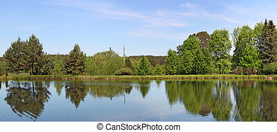 Panorama of the forest lake with trees