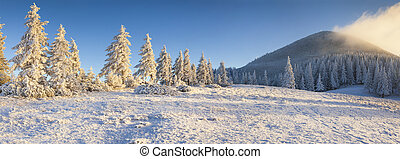 Panorama of the frosty morning in the winter mountains.
