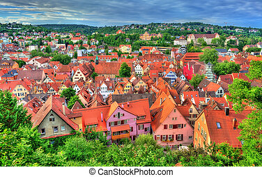 Panorama of the historical center of Tubingen, Baden...