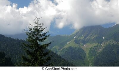 Panorama of the lake ritsa, Abkhazia, southern Caucasus. Time lapse