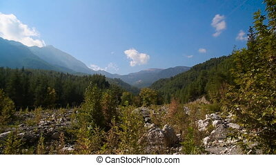 panorama of the landscape