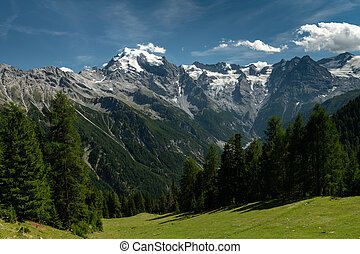 Panorama of the Ortler Alps near Stelvo Pass on a sunny day ...