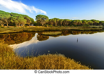 Panorama of the Osala River - Panorama of the Osala river, a...