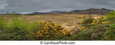 Panorama of the rural Irish landscape