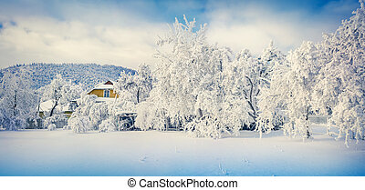 Panorama of the sunny winter landscape in mountain village