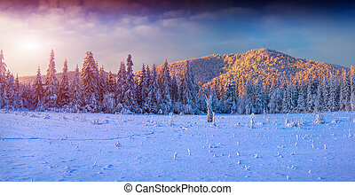 Panorama of the winter sunrise in the mountains