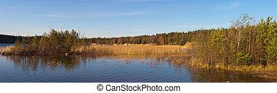 Panorama of wood lake