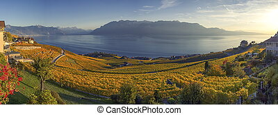 Panorama on Lavaux region, Vaud, Switzerland - Panorama on...