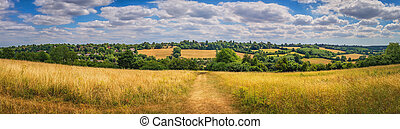 Panorama or rural Surrey landscape - Hills, grassland and...