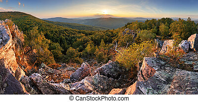 panorama, -, outono, eslováquia, floresta, sol
