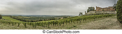 Panorama over the hills with vineyards and castle Brolio in...
