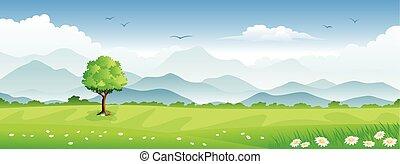 panorama, paisagem, verão