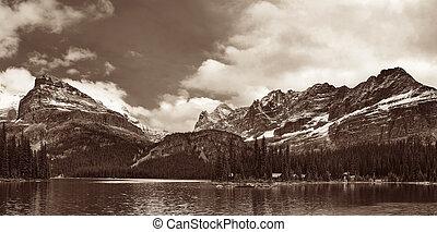 panorama, parque nacional, yoho