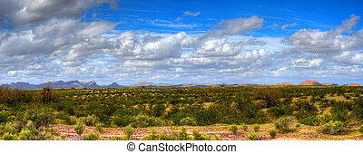 panorama, pustynia, sonora