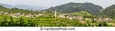 Panorama Santo Stefano village surrounded by vineyards