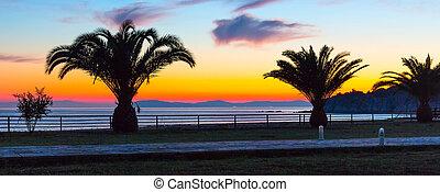 panorama, sobre, árvores, palma, mar, pôr do sol