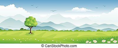 Panorama summer landscape