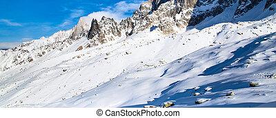 panorama, van, sneeuw, berg landschap