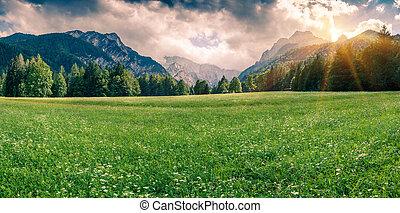 panorama, van, triglav, bergketen
