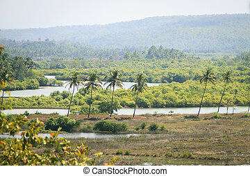 Panorama view of beauty nature in Goa