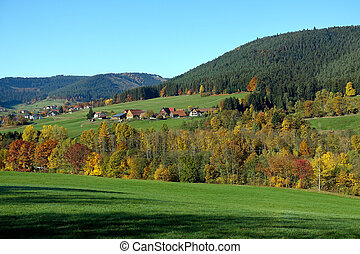 Panorama view of Black Forest in autumn