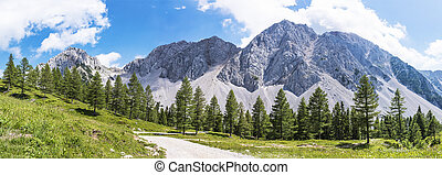 Panorama view of Maltschacher Alm and Karawanks with...