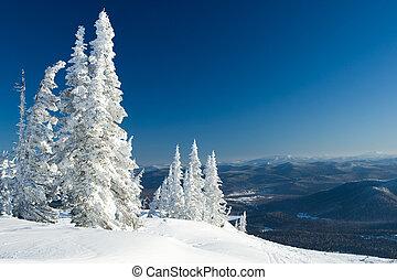 panorama, vinter