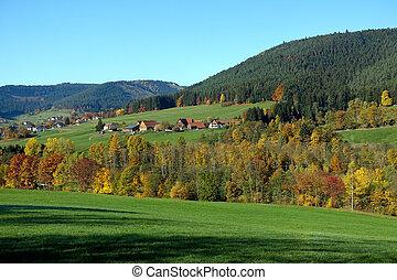 panorama, vista, di, foresta nera, in, autunno